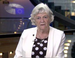 Ann Widdecombe's EU slavery remarks branded as 'disgusting'