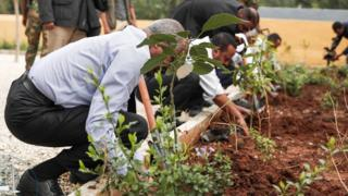 Ethiopia bids to break tree-planting record to tackle climate change