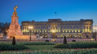 Man arrested after scaling Buckingham Palace gates