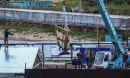 Russia's whale release plan called success despite criticism