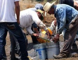 Stopping Oil Theft in Mexico Futile Game of Whac-a-Mole