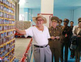 The true impact of North Korean sanctions