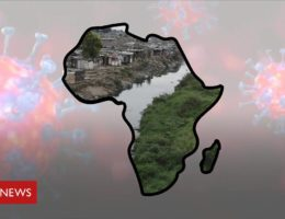 Coronavirus in Africa: What impact could virus have on the continent?