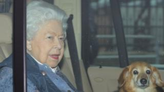 Coronavirus: Queen urges UK to 'work as one' in message to nation