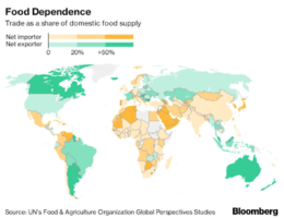 Countries Are Starting To Hoard Food As The Pandemic Continues To Spread