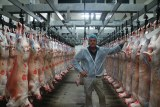 COVID-19 cuts deep as Middle East lamb market vanishes into thin air