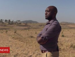 Ethiopian Airlines crash: 'I saw body parts being taken in white bags'