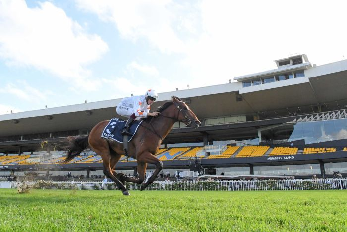 A jockey rides a horse to victory at Rosehill Racecourse without any spectators in the grandstand.