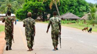 Mozambique jihadists seize key town in Cabo Delgado