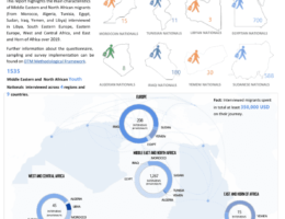 World: DTM Middle East and North Africa: Profile of youth migrants - Flow monitoring survey results (2019)