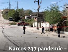 Chihuahua:: Narcos 237 pandemic - Coronavirus 0