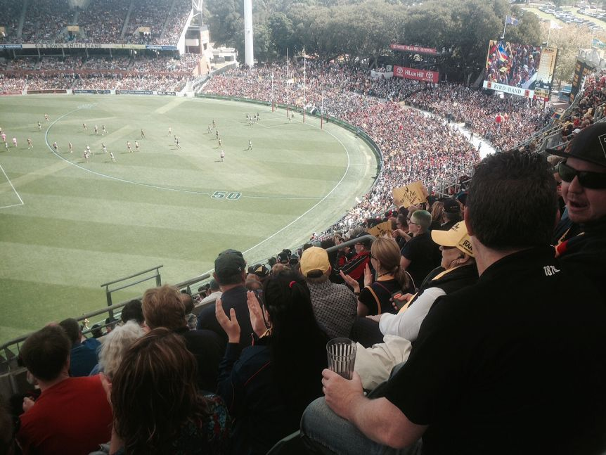 A crowd watches a game at Adelaide Oval