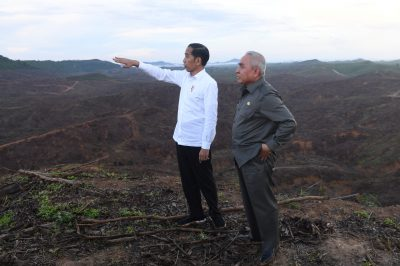 Indonesian President Joko Widodo gestures as Governor of East Kalimantan Isran Noor stands during their visit to an area, planned to be the location of Indonesia's new capital, at Sepaku district in North Penajam Paser regency, East Kalimantan province, Indonesia, 17 December 2019 (Photo: Reuters/ Antara Foto/Akbar Nugroho Gumay).