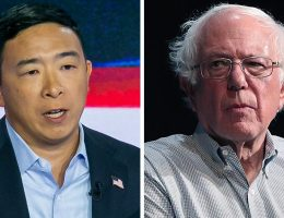 Judge orders New York BOE to hold primary in June, reinstate Andrew Yang and Bernie Sanders on ballot
