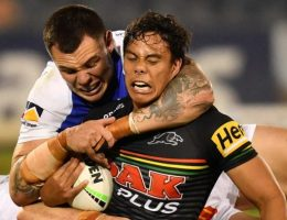 Knights weather injuries, an eight-point try and golden point to salvage draw against Panthers