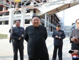 North Korea: between fact and fiction