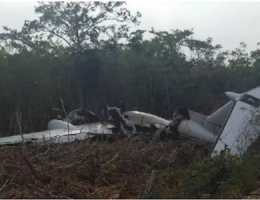 Q.Roo: Burned Out Light Plane Found in the Jungle