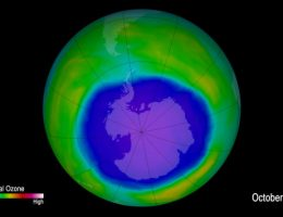 Scientists look to 'canary in the coal mine' for ozone layer recovery