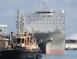 Animals Australia court bid to stop sheep ship Al Kuwait from sailing to Middle East during northern summer fails