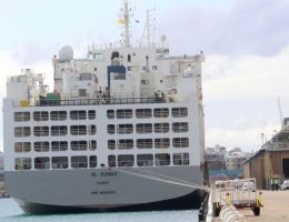 Fears a 'catastrophic incident' may have happened if coronavirus ship sheep were sent to Middle East