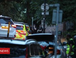 In pictures: Reading park stabbings