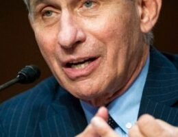 Fauci warns US is 'knee-deep' in first wave of coronavirus as new cases hit record numbers in some states