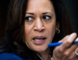 Kamala Harris' Wikipedia page scrubbed of information amid veepstakes, igniting online fight