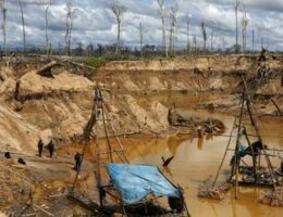 Soaring Gold Prices During Pandemic Fuel Peru's Illegal Mining