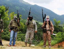 The Operations and the Understanding of Mexican Drug Cartels