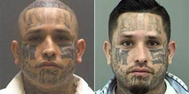 Rodrigo Flores, 34, has been added to the Texas 10 Most Wanted Fugitives list and is affiliated with the MS-13 gang, according to officials.