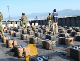 2 Plus Tons of Cocaine Decommissioned near Acapulco, Guerrero