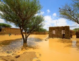 Floods affect more than 50,000 in Sudan: UN