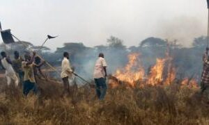 Kenyan military deployed to fight fire in Tsavo park
