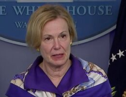 Pelosi announces she has 'no confidence' in top White House coronavirus adviser Deborah Birx