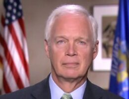 Sen. Johnson on stalled coronavirus relief negotiations: Dems would 'rather not do anything' to 'help people'