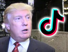 Trump Says He'll Ban TikTok from the United States