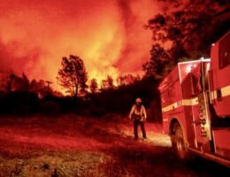 'Devastation': Wildfires ravage western United States