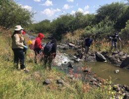 Nearly 100 bodies found in eight clandestine mass graves in Irapuato, Guanajuato