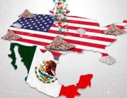 "The ""gringo partners"" of Mexican cartels, ""U.S. Domestic Cartels"" named"