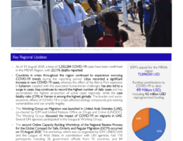 Yemen: IOM Regional Office for Middle East and North Africa COVID-19 Response - Situation Report 11 (20 August - 02 September 2020)