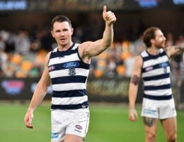 AFL premiership race down to four as Cats, Tigers renew their claims for the flag