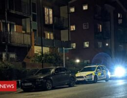 Attempted murder arrest as Southampton police officer stabbed