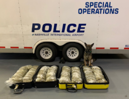Man Allegedly Flies San Francisco to Nashville With 87 Pounds of Marijuana, Predictable Result Ensues