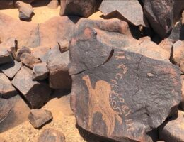 Might Al Harrah desert drawings reveal the Middle East's forgotten past?