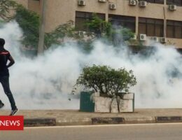 Nigerian police fire tear gas at #EndSars protests against brutality