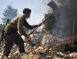 Wildfires in Middle East force evacuations, detonate landmines