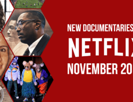 New Documentaries Coming to Netflix in November 2020