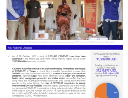 Yemen: IOM Regional Office for Middle East and North Africa COVID-19 Response - Situation Report 15 (16 - 28 October 2020)