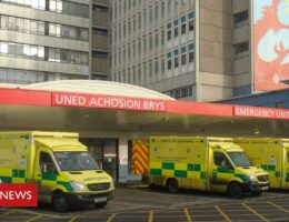 Covid: Cardiff health board plea for critical care help