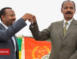 Tigray crisis: Eritrea's role in Ethiopian conflict
